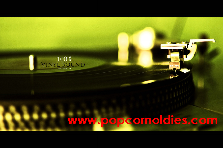100 procent vinyl